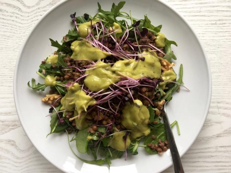 Blattsalat mit Linsen, Kernen, Sprossen und Avocado-Orangensaft Dressing